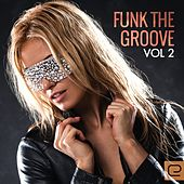 Funk The Groove, Vol. 2 - EP by Various Artists