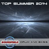 Drum & Bass Top Summer 2014 - EP by Various Artists