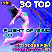 Flight Of Mind, Vol. 3 - 30 Progressive & Goa Psy Trance Hits by Various Artists