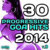 Progressive Goa Hits 2014, Vol. 3 (Top 30 Best Selling International Electronic Dance Music Masters) by Various Artists