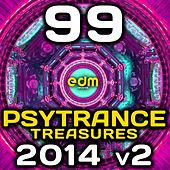 Psy Trance Treasures 2014, Vol. 2, 99 Best of Fullon, Progressive & Goa Hits 2007-14 Summer Festival by Various Artists
