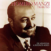 Homero Manzi Tributo by Various Artists