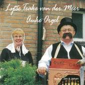 Lijtse Teake van der Meer, Auke Orgel de Various Artists