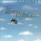Toucan Do It Too by The Amazing Rhythm Aces