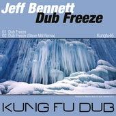 Dub Freeze by Jeff Bennett