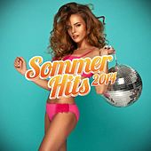 Sommer Hits 2014 by Various Artists