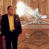La Promesa de Tobias Rosa