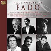 Male Voices of Fado by Various Artists