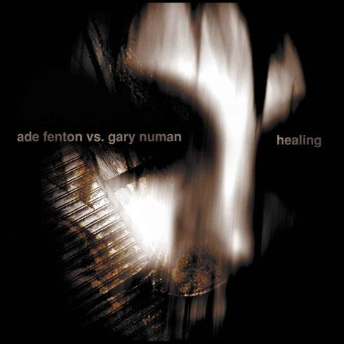 Healing by Ade Fenton