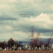Travelling by Irena Zilic