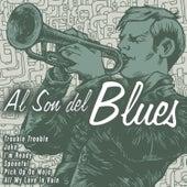 Al Son del Blues de Various Artists