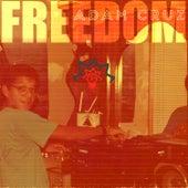 Freedom LP by Adam Cruz