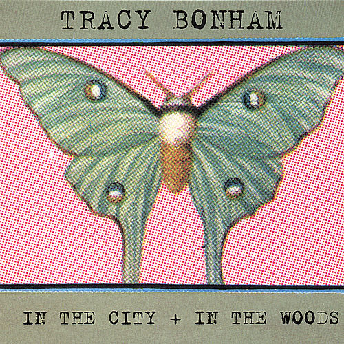 In the City + in the Woods by Tracy Bonham