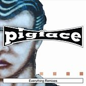 Everything Remixes by Pigface