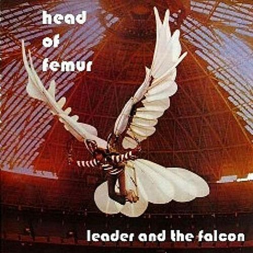 Leader And The Falcon by Head Of Femur