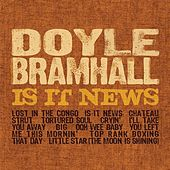 Is It News? by Doyle Bramhall
