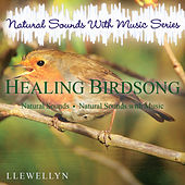 Healing Birdsong: Natural Sounds with Music Series by Llewellyn