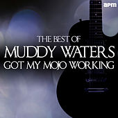 Got My Mojo Working - The Best of Muddy Waters de Muddy Waters