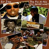 The Pic A Nic by Sir Jinx