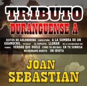 Tributo Duranguense by Joan Sebastian