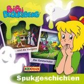 Spukgeschichten (Bibi Blocksberg und die Vampire & Der Geisterkater) von Bibi Blocksberg