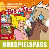 Abenteuer mit den Wildpferden von Bibi & Tina