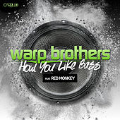 How You Like Bass by Warp Brothers