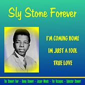 Sly Stone Forever by Sly & the Family Stone