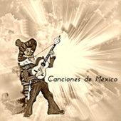 Canciones de México van Various Artists