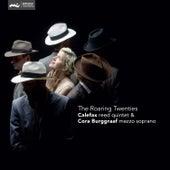 Roaring Twenties by Various Artists