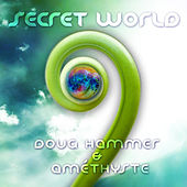 Secret World by Doug Hammer