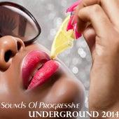 Sounds of Progressive Underground 2014 de Various Artists