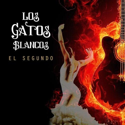 El Segundo by Los Gatos Blancos
