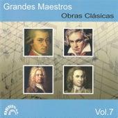 Grandes Maestros, Obras Clásicas Vol. 7 by Various Artists