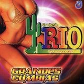 Grandes Cumbias by Conjunto Rio Grande