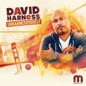David Harness - UnHarnessYoSelf von Various Artists