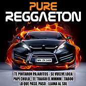Pure Reggaeton by Various Artists