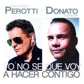 Yo No Se Qué Voy a Hacer Contigo (feat. Donato Poveda) von Riccardo Perotti