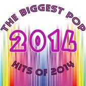 Pop Hits 2014 von Various Artists
