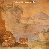Vivaldi: The Four Seasons & Concertos - Pachelbel: Canon in D Major - Bach: Air On the G String & Toccata and Fugue - Albinoni: Adagio for Strings & Adagio for Oboe - Mendelssohn: Wedding March by Various Artists