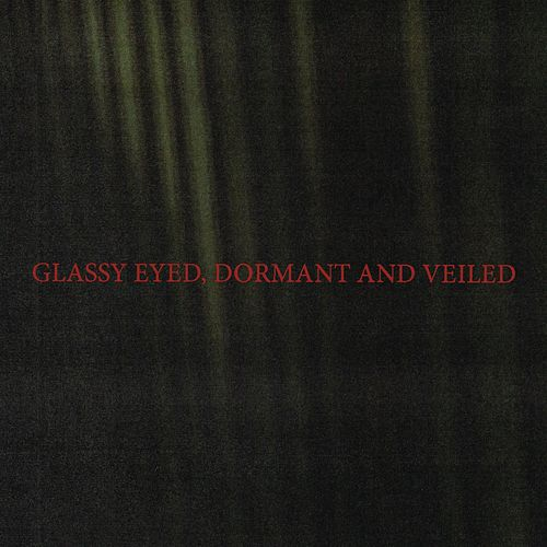 Glassy Eyed, Dormant and Veiled by Iceage