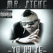 Yo No Se by Mr. Steve