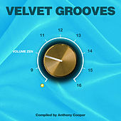 Velvet Grooves Volume Zen! von Various Artists