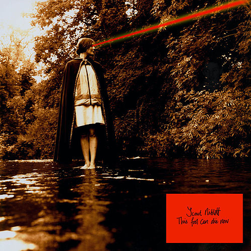 This Fool Can Die Now by Scout Niblett