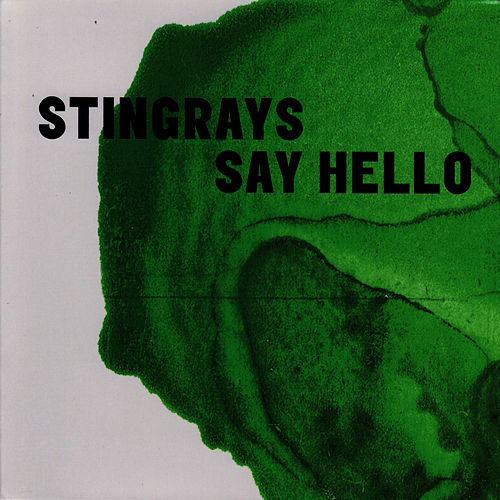 Say Hello by The Stingrays