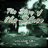 The Story of the Blues, Vol. 18 by Various Artists