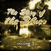 The Story of the Blues, Vol. 3 by Various Artists