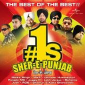 #1s - Sher-E-Punjab de Various Artists