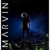 Marvin de Marvin