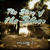 The Story of the Blues, Vol. 1 by Various Artists